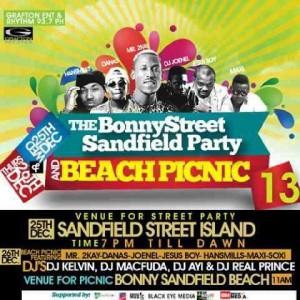 SANDFIELD STREET-BEACH PICNIC