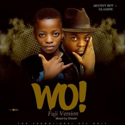 Destiny Boy – WO Cover