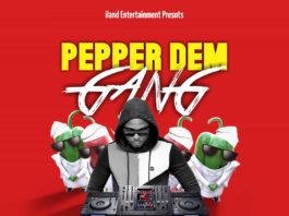 DJ D20 - Pepper Dem Gang Mix