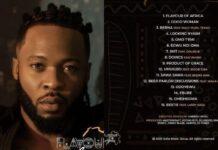 Flavour of Africa album