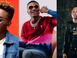 "Davido Fan Accuses Wizkid Of Ruining Chidokeys And Soft's Career Afters ""Jumping"" On Their Songs"