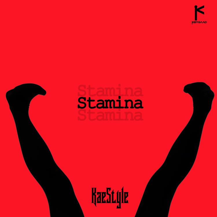 Kaestyle Stamina